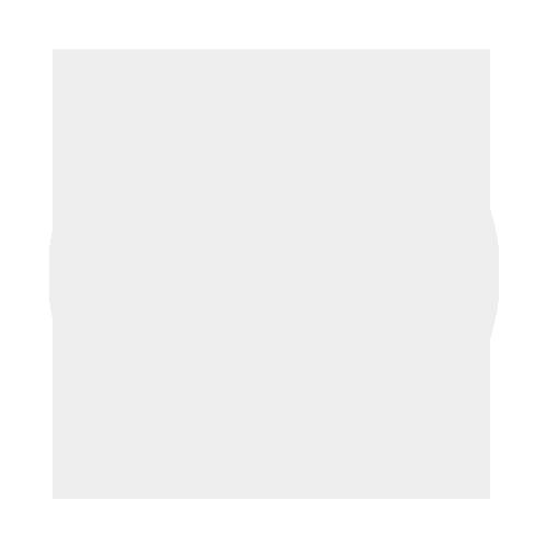 Managed WordPress Maintenance