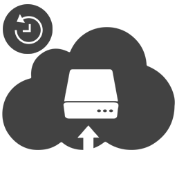 Backup and On-demand restore.